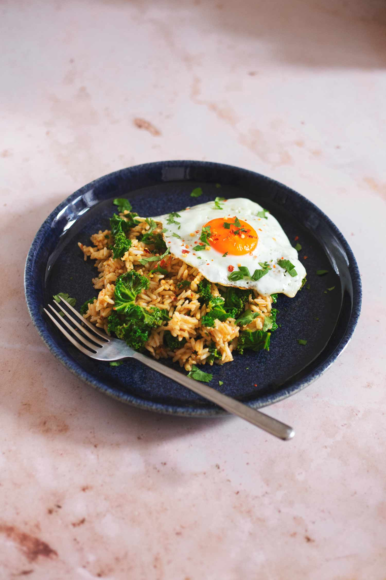 Fried rice with a fried egg